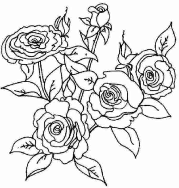 Browning buckmark coloring page coloring pages for Browning coloring pages